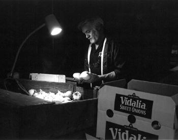Raymond Bland inspecting Vidalia Onions